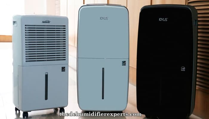what does a dehumidifier do
