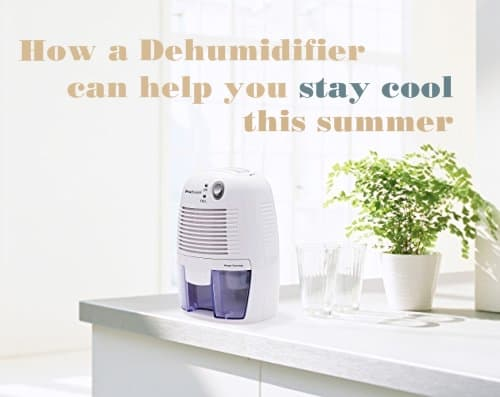 Why We Need A Dehumidifier In Summer Time