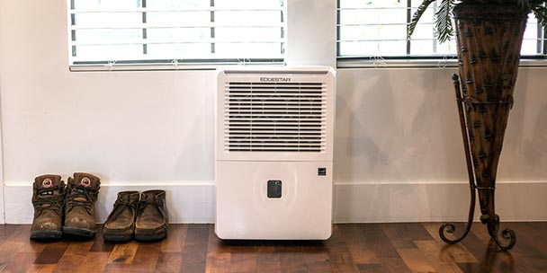 Find the best dehumidifier for your house