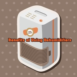 [Infographic] Benefits of Using a Dehumidifier