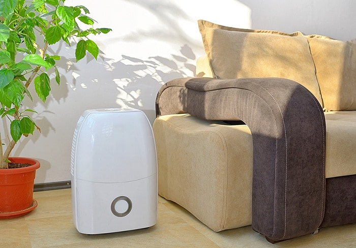 Use Dehumidifier to Get Rid Of Mildew Odor