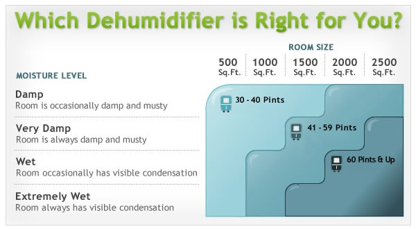 How to Choose the Best Size of Dehumidifier