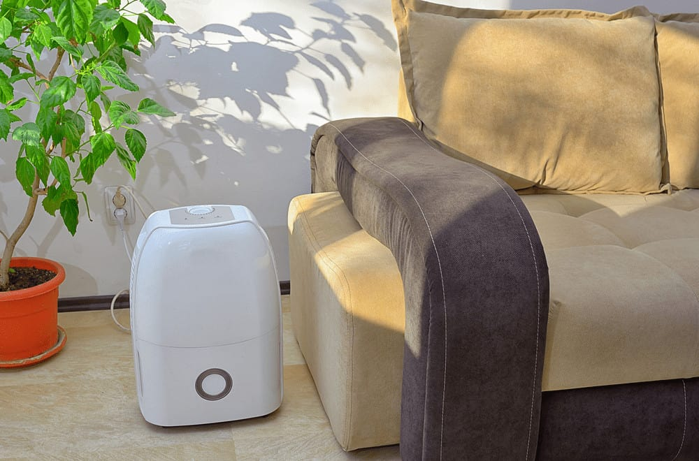 Best Dehumidifier for Basement Reviews