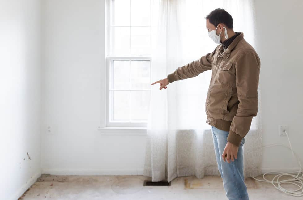 How Much Does It Cost The Of Mold Inspections
