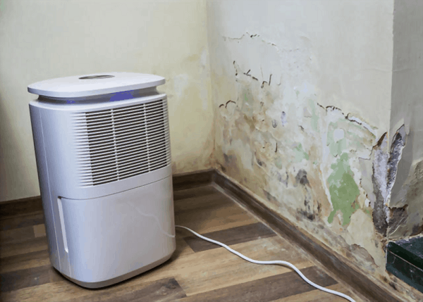 signs you need hisense dehumidifier