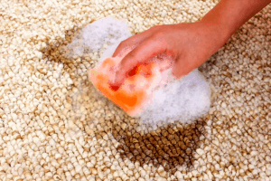 clean carpet to remove mold and mildew