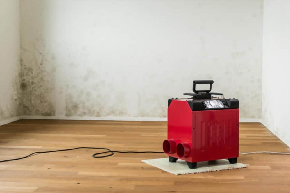best commercial industrial dehumidifier reviews