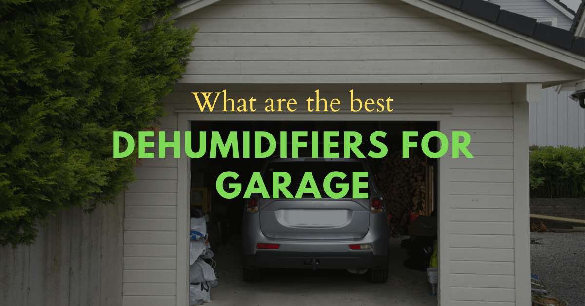 dehumidifier for garage reviews