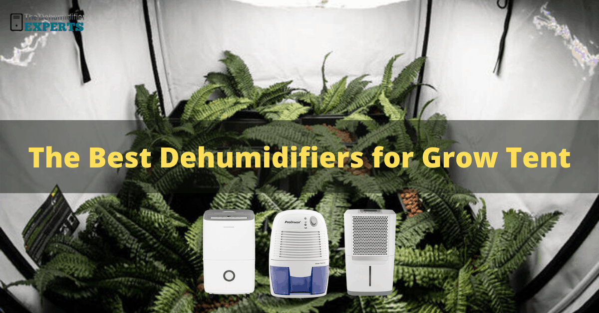 best grow tent dehumidifier