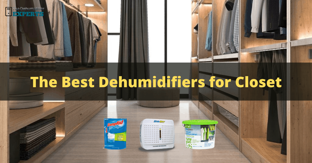 best dehumidifier for closet