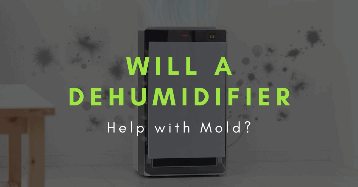 will a dehumidifier help with mold