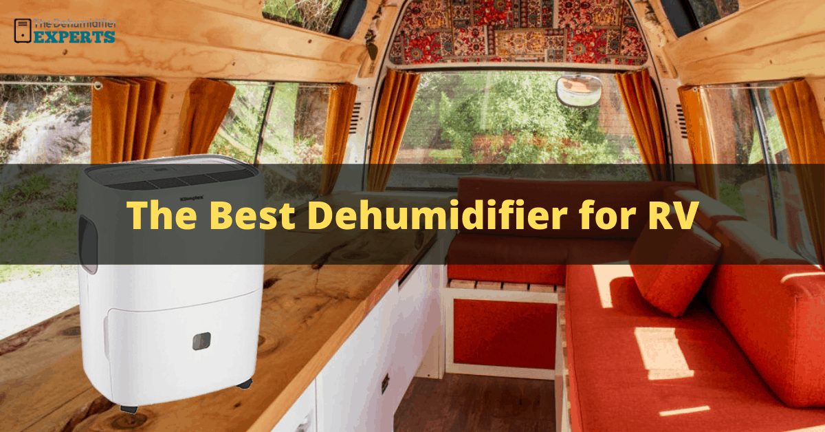 best dehumidifier for RV