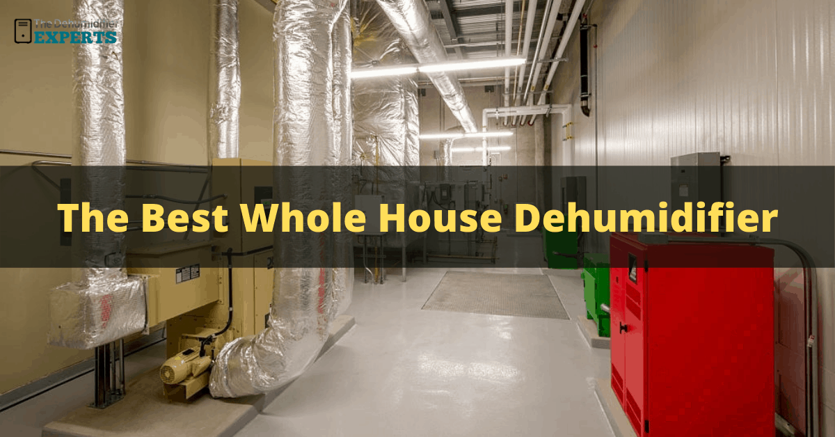 the best whole house dehumidifiers