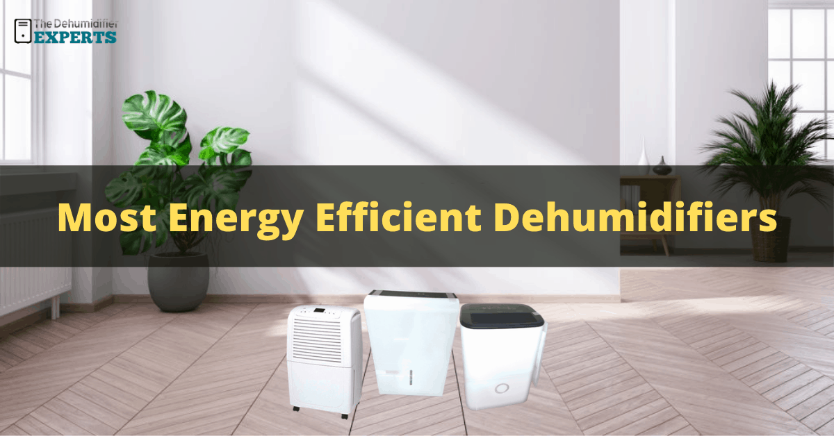most energy efficient dehumidifier reviews